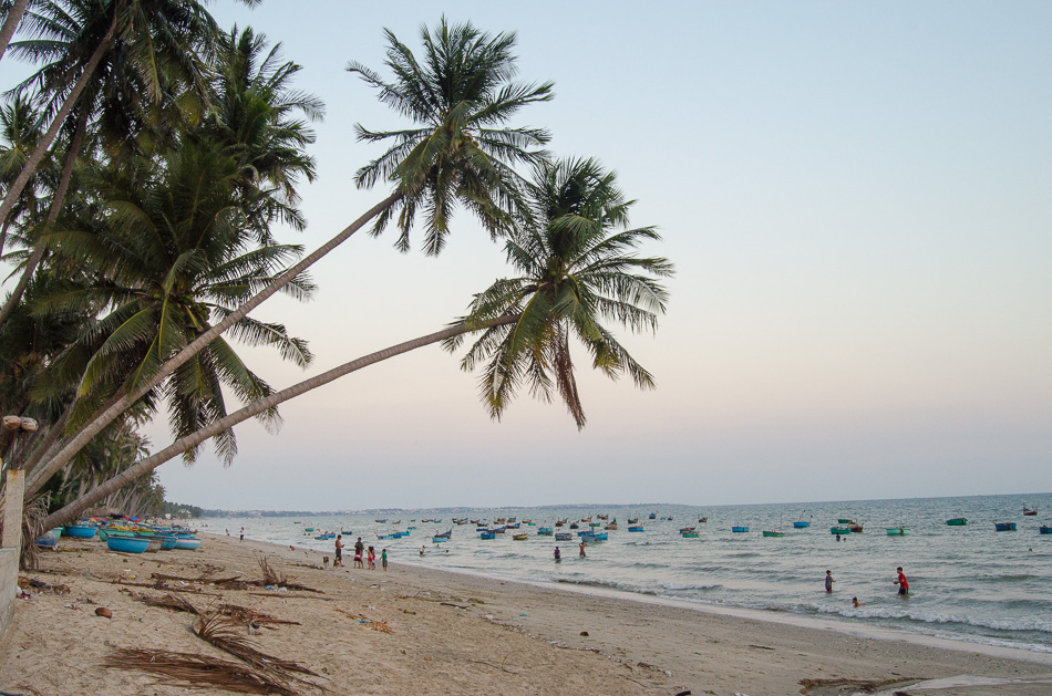 Palm trees at Mui Ne Beach