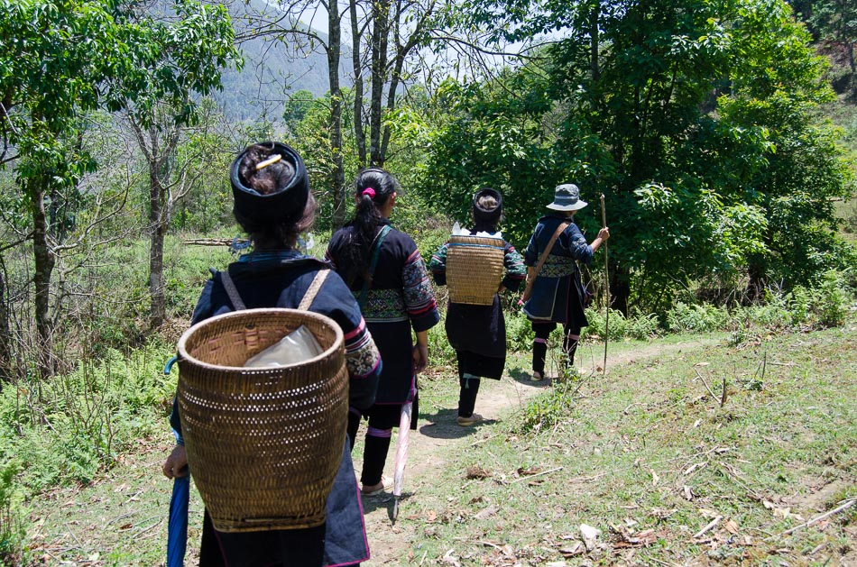 Hmong women showing us the way through the Sapa moutains in Vietnam